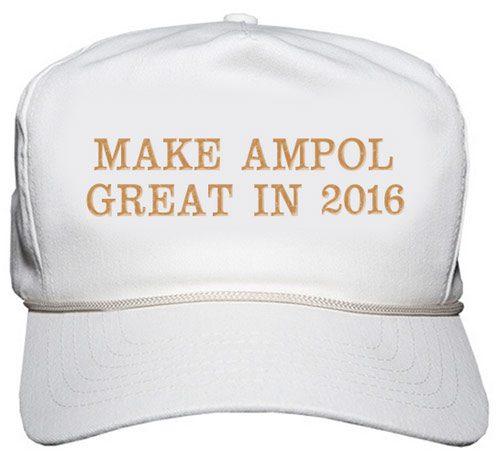 makeampolgreatin2016