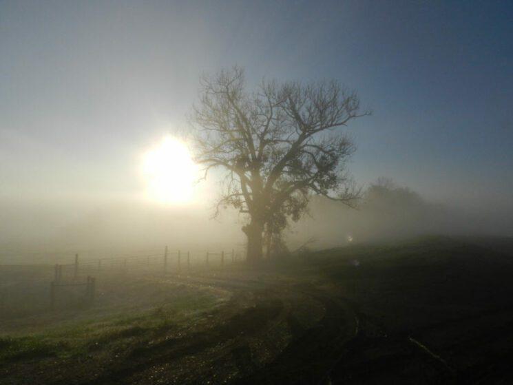 Vicksburg-fog